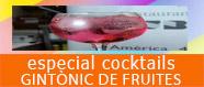 Especial cocktails Gintònic de Fruites