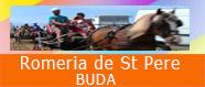 Romeria de St Pere a Buda