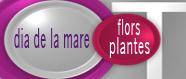 Dia de la mare especial flors i plantes